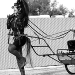 Female Show Pony Pulling A Cart
